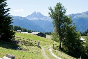 Hiking vacation in South Tyrol 3